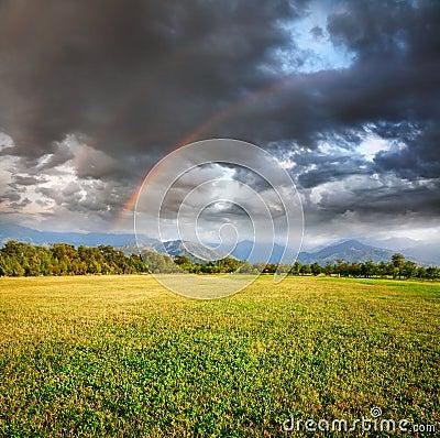 Rainbow under Grass field