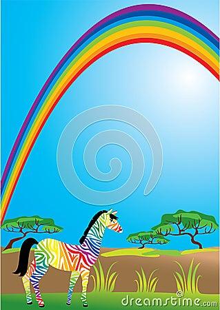 Rainbow and zebra