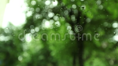 raindrops Γυαλί με τις σταγόνες βροχής Άποψη των πράσινων υγρών δέντρων απόθεμα βίντεο