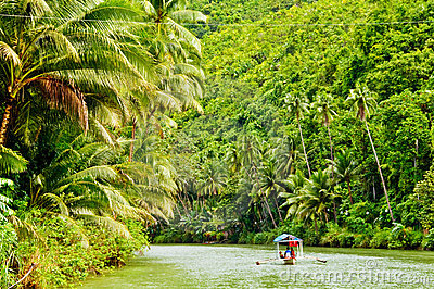 Rainforest River Cruise