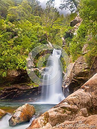 Rainforest waterfall New Zealand
