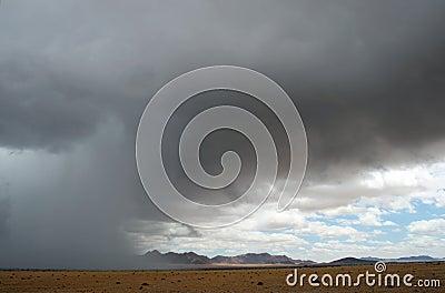 Rainy Season. Namibia