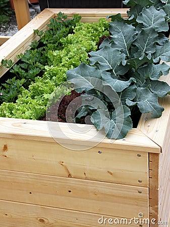 Raised garden bed for container gardening