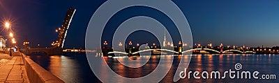The raised Troitsk bridge in St.-Petersburg