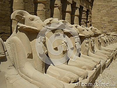 Ram statues at Karnak Temple, Luxor / Egypt