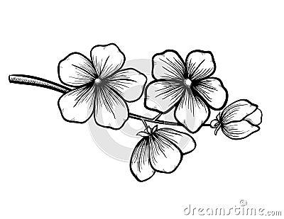 Moderno Dibujos De Flores En Blanco Y Negro Ideas - Ideas para el ...