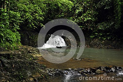 Raman Forest waterfall