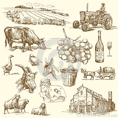 Ramassage de ferme