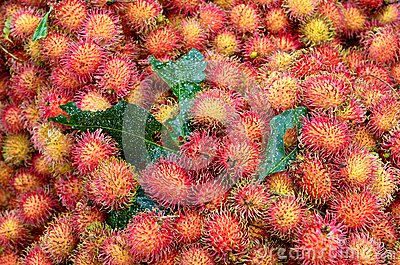 Rambutan close up