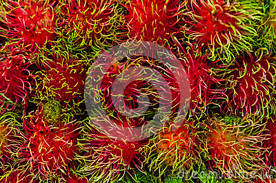 Rambutan on sales