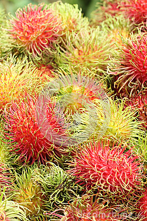 Rambutans Tropical Fruit