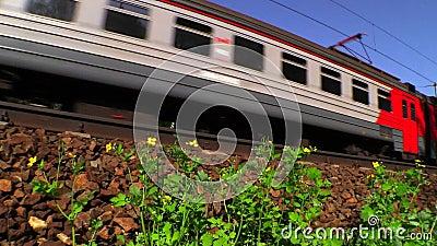 RAMENSKOE, REGIONE DI MOSCA, RUSSIA - 18 MAGGIO 2014: Ferrovia russa Il treno del carico ed il treno suburbano seguono nella stes stock footage