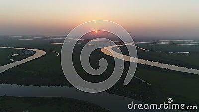 Rami del fiume al tramonto video d archivio
