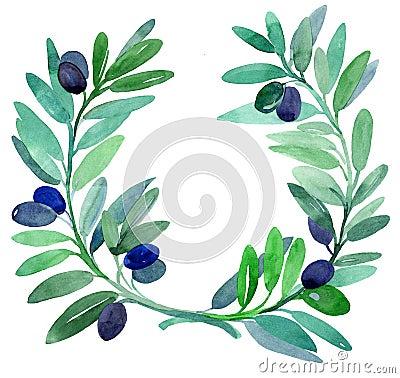 Rami di ulivo immagini stock immagine 19127304 for Acquisto piante ulivo