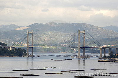 Rande bridge in Vigo, Spain