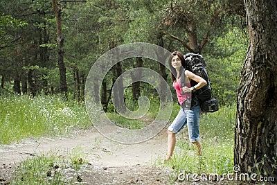 Randonneur dans la forêt