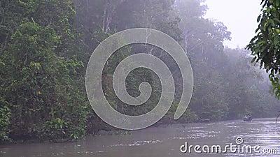 Ranku Tropikalny Rzeczny rejs zbiory