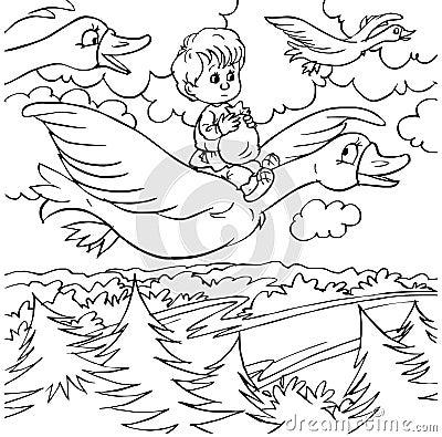 Rapaz pequeno e gansos selvagens