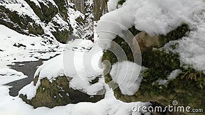 Rapidi nel fiume invernale attraverso la roccia che ha la neve coperta archivi video