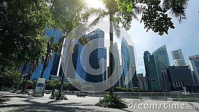 Rascacielos y palmeras en el paseo marítimo de Marina Bay almacen de metraje de vídeo