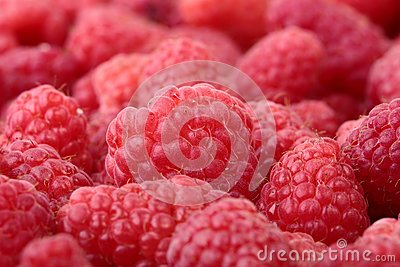 Raspberries Close-up