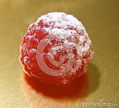 Raspberry Single