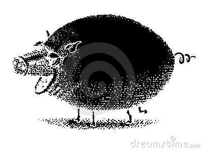 Raster Pig Black Royalty Free Stock Photo - Image: 19434105