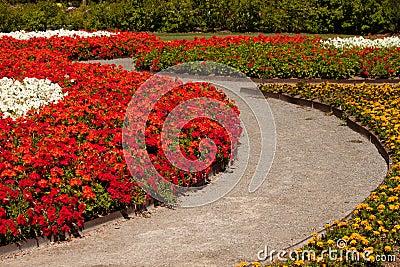 Rastro del jardín de flor