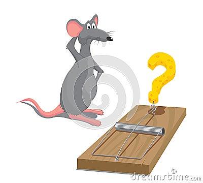 Free Rat Stock Photos - 15666133