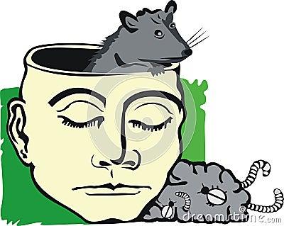 Rat in brain
