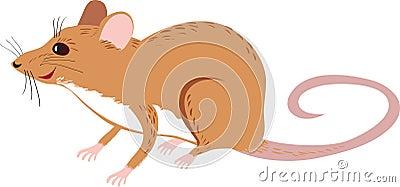 rat stock vector image 50342842