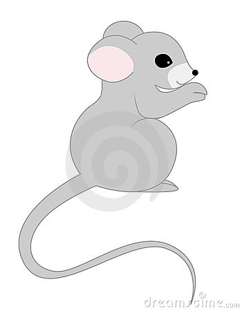 Rat / mouse