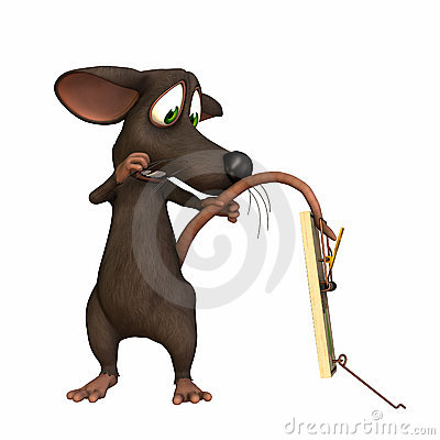 Rato - cauda na armadilha