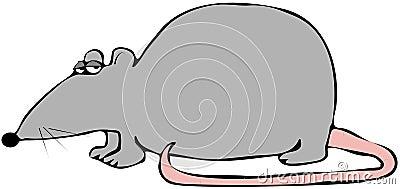 Rato com uma cauda cor-de-rosa