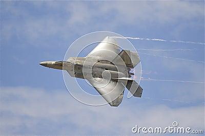Raubvogel F22