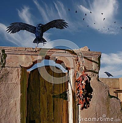 Raven Landing