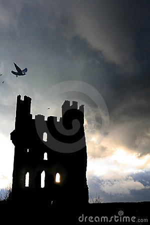 Free Ravens Tower Royalty Free Stock Image - 519736