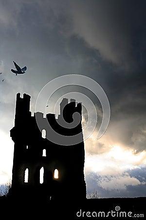 Free Ravens Tower Royalty Free Stock Image - 519736