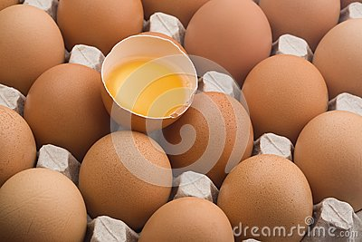 Raw brown eggs in an egg carton