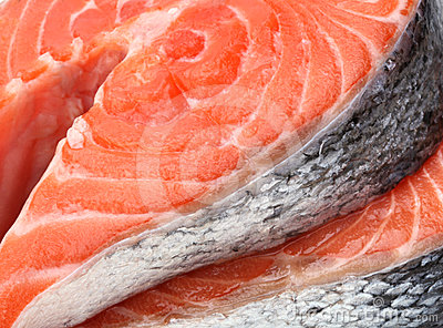 Raw fillet of salmon fish