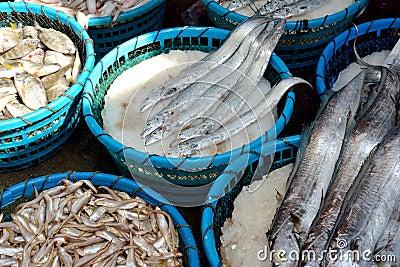 Raw fish market
