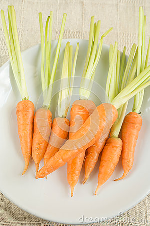 Raw fresh carrots on white plate