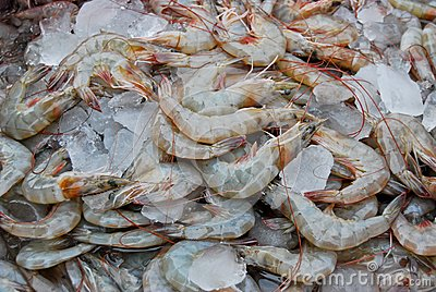 Raw fresh shrimp in market