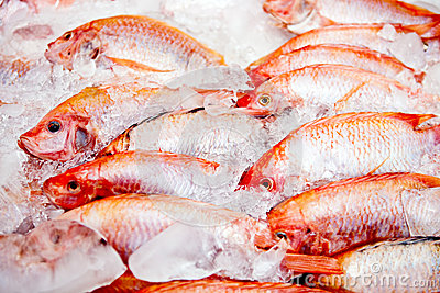 Raw frozen fish
