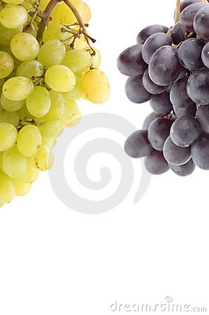 Raw grapes on white