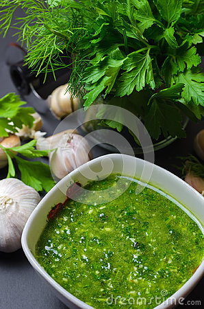 Free Raw Green Sauce With Garlic, Dill And Parsley Stock Photography - 95125602