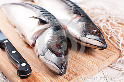 Raw mackerel fish with knife