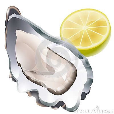 Free Raw Oyster Illustration Stock Images - 46077814