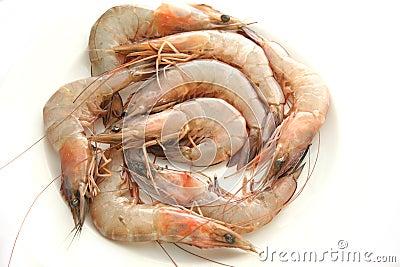 Raw prawn
