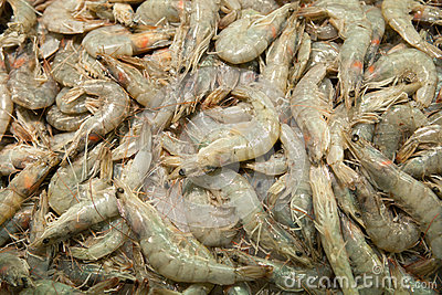 Raw shrimps